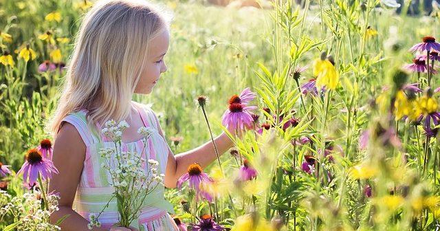 little-girl-2516578_6401