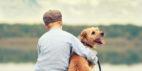Welche Vorteile haben Haustiere für Kinder?